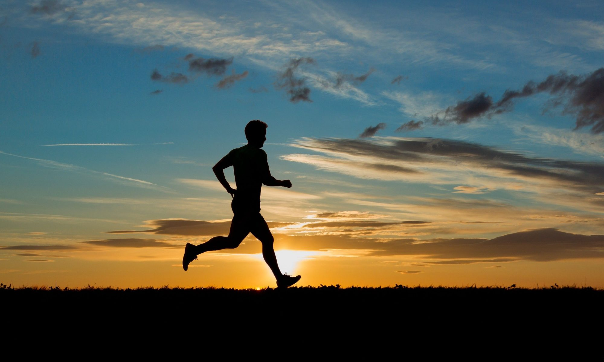 Andy Forkgen Marathon Blog